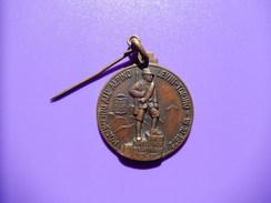 Medaglia Svizzera Monumento All'alpino 1972 - ME73 - Altri