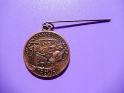 Medaglia 67° Adunata Nazionale Alpini Treviso 1994 - ME74 - Altri