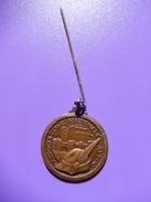 Medaglia 54° Adunata Nazionale Alpini Verona 1981 - ME86 - Italia