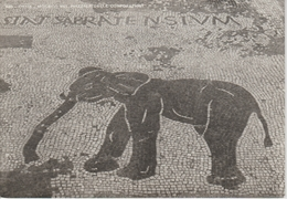 (IT786) OSTIA. MOSAICO ELEPHANT .. UNUSED - Italia