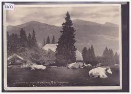FORMAT 10x15 Cm - DISTRICT D'ORBE - CHALET DU MONT DE BAULMES - B ( PETIT PLI D'ANGLE ) - VD Vaud