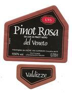 ITALIA - Etichetta Vino PINOT ROSA DA UVE DI PINOT NERO Cantina REGALVINI Di Crocetta Del Montello Rosato Del VENETO - Vino Rosato