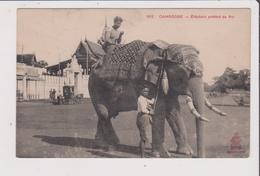 CPA - CAMBODGE - Eléphant Préféré Du Roi - Cambodia