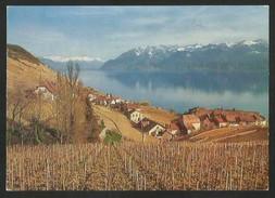EPESSES VD Lavaux Lac Léman 1972 - VD Vaud
