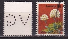 AUSTRALIA 1975 Helichrysum Thomsonii 18 C SG 608 With Perfin V.G. - Gebruikt
