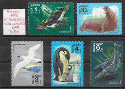 Animaux Divers Antarctique Pôle Sud Manchot - Russie N°4498 à 4502 1978 ** - Timbres
