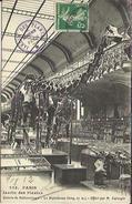 CPA De PARIS - Jardin Des Plantes - Galerie De Paléontologie - Le Diplodocus - Offert Par M. Carnegie. - Parcs, Jardins