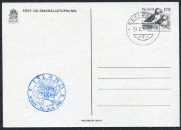 1981 Iceland WIPA Wien Stamp Exhibition Puffin Maxicard - Cartoline Maximum