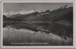 Immensee, Blick Gegen Arth Und Die Alpen Vom Hotel Pension Rigi - Photo: Globetrotter No. 1102 - SZ Schwyz
