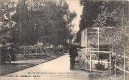86 - VIENNE / Chatellerault - Cerf Du Square Gambetta - Chatellerault