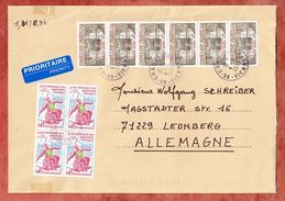 Grossbrief, MiF Senat U.a., Chauvigny Nach Leonberg 2013 (35692) - France