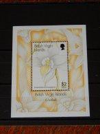 British Virgin Islands - 1997 Orchids Block MNH__(TH-15406) - British Virgin Islands