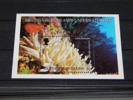 British Virgin Islands - 1998 Marine Life Block MNH__(TH-18216) - British Virgin Islands