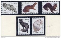 SOVIET UNION 1980 Fur-bearing Mammals Set Of 5 MNH / **.  Michel 4969-72 - 1923-1991 USSR