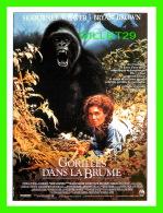 AFFICHES DE CINÉMA - GORILLES DANS LA BRUME - GORILLAS IN THE MIST 1987 - - Affiches Sur Carte