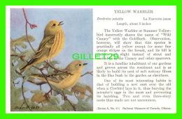 OISEAUX - YELLOW WARBLER - DENDROICA PETECHIA - LA FAUVETTE JAUNE - SÉRIE A, No 41 - - Oiseaux