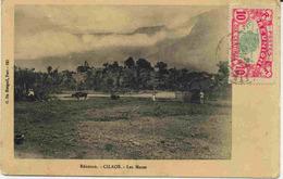 Carte Postale De La Réunion