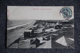 CAROLLES - Vue Générale De La Plage - Frankreich
