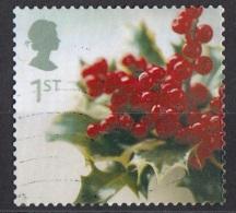 2082 Gran Bretagna 2002  Pungitopo  Ruscus Aculeatus Great Britain Inghilterra Used - Vegetazione