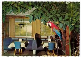 CAFE' FLORIDA, STUDEN-BIEL - MINIGOLF, CAMPING - 1971 - BAR - Caffé
