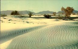 N°2941 QQQ 55  ALBUQUERQUE  RIPPLES OF WHITE SANDS WHITE SNDS NATIONAL MONUMENT NEW MEXICO - Albuquerque