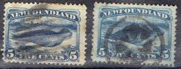 COLONIES BRITANNIQUES ! Timbres Anciens De Terre-Neuve De 1880 N°38 Et 38a - Grande-Bretagne (ex-colonies & Protectorats)