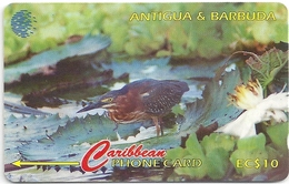 Antigua & Barbuda - Green Backed Heron - 104CATB - 1996, 30.000ex, Used