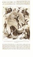 LES ANIMAUX SAVANTS EXHIBES à PARIS ( Cirque D'hiver Et Folies-bergeres )    1884 - Paris