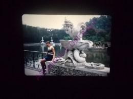 Diapositive Slide Diapo 1968 Italie Italy Florence Jardin De Boboli Esplanade De L Ilot - Diapositive
