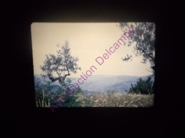 Diapositive Slide Diapo 1968 Italie Italy Environs De Florence Theatre Romain De Fiesole Toscane - Diapositive