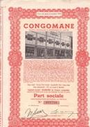 CongoMane - Part Sociale - Capital 40 000 000 Francs Congolais - Afrique