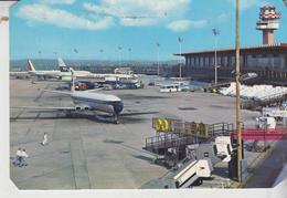 Fiumicino Roma Aeroporto Leonardo Da Vinci Aerei Avion Alitalia   No Vg