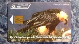 ANDORRA - BIRD - Andorre