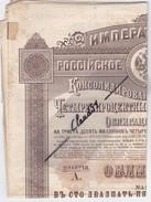 Gouvernement Impérial De Russie Des Chemins De Fer ,2ém Serie . Obligation De Cent Vingt-cinq Roubles Or - Chemin De Fer & Tramway