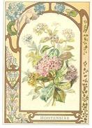 Chromo Fiche Descriptive Fleurs Hortensias Cadre Frise Art Déco Dorures, 9.5cm X 13.5cm, N°22 - Sammelkarten, Lernkarten