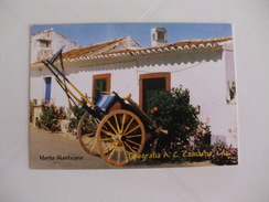 Tipografia A.C.Camacho, Lda Almada Portugal Portuguese Pocket Calendar 2008