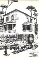 FREIXIAL - LOURES - VINHO VIN VINO WINE - MARTIN MAQUEDA ART SIGNED - PORTUGAL