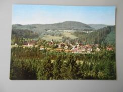 ALLEMAGNE BADE-WURTEMBERG HINTERZARTEN / HOCHSCHWARZWALD - Hinterzarten