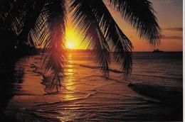 TRAMONTO A TAHITI - NUOVA NV - Tahiti