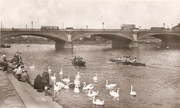 Angleterre  :  Nottingham  River Trent      Ré 2728 - Nottingham