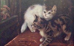[DC9016] CPA - COPPIA DI GATTI CON GALLO - ANIMALI - TUCK´S POST CARD - Non Viaggiata - Old Postcard - Gatti