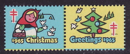 1965 USA - CHRISTMAS - GREETINGS - National Tuberculosis Association (NTA) TBC Charity Stamp / Cinderella / Vignette - Krankheiten