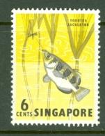 Singapore: 1962/66   Pictorial - Marine Life, Flowers, Birds   SG67    6c    MH - Singapore (1959-...)