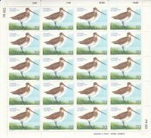 Faroe Islands MNH 1977 #28-#30 Set Of 3 Minisheets Of 20 Birds - Féroé (Iles)