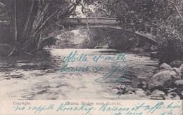 Carte Postale : Chania Bridge Near Nairobi  East Africa     1919 - Kenia