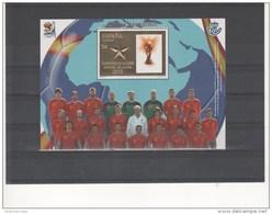 ESPAÑA-4608 Hoja Bloque Campeona Copa Mundial FIFA 2010- (según Foto) - Blocs & Hojas