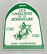 G-I-E, Plaque De Concours , 13.5 X 15 , Les Cavaliers De La Bonnieure , Cso, CHASSENEUIL ,16 ,  Frais Fr : 3.15 € - Autres Collections