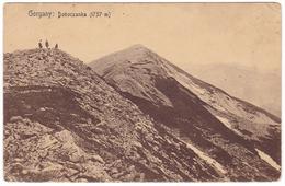 #7545 Ukraine, Gorgany Mountain, Postcard Mailed 1916: Doboczanka (1757 M) - Ukraine