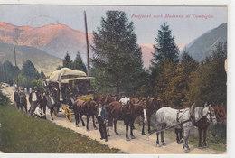 Posta Per Madonna Di Campiglio - Bellissima Animazione - Affr.Austriaco    (A26-110117) - Italia