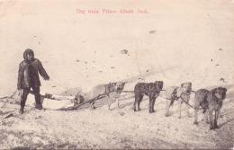 ALTE AK  PRINCE ALBERT / Prov. Saskatchewan / Kanada  - Dog Train / Hundeschlitten - 1907 Gelaufen - Saskatchewan